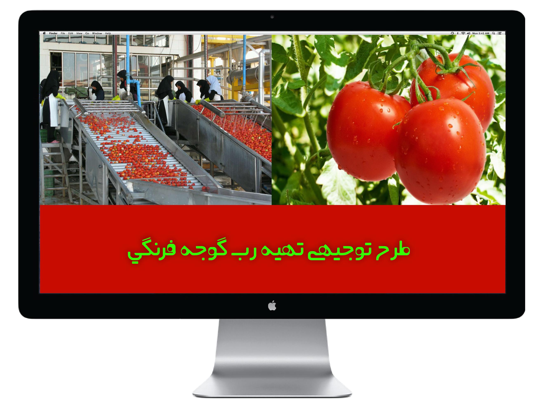 product image طرح توجیهی تهیه رب گوجه فرنگی طرح توجیهی تهیه رب گوجه فرنگی
